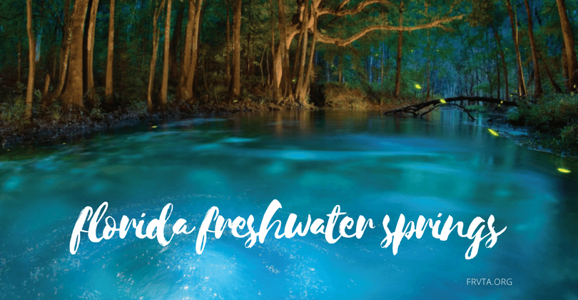 Top Florida Freshwater Springs