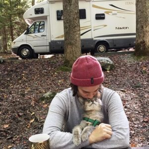 the perks and pitfalls of traveling with pets
